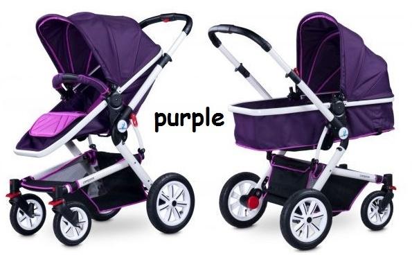 compass14_purple_l