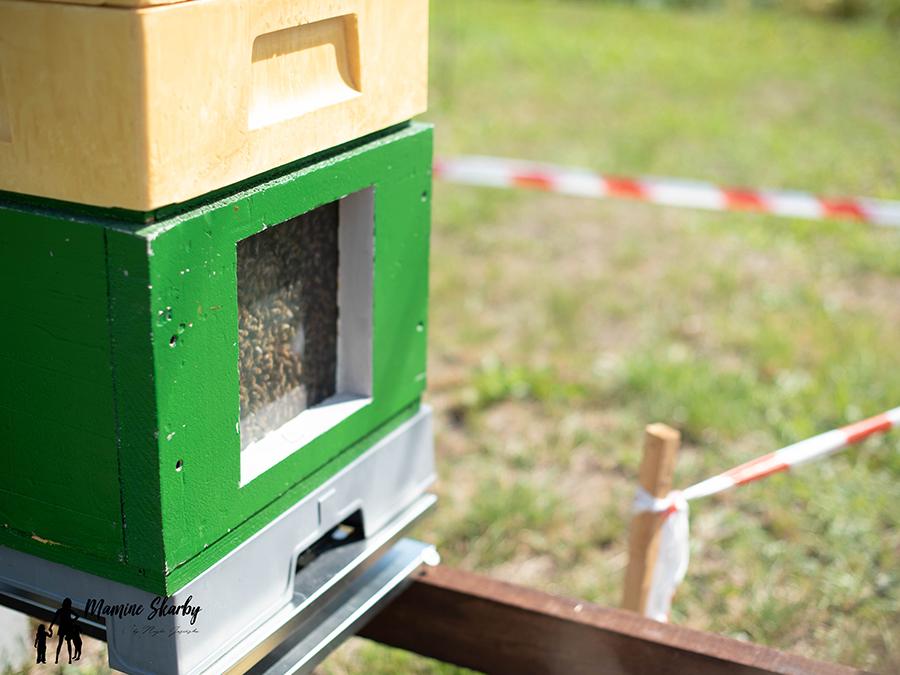 miodolandia pszczelarz
